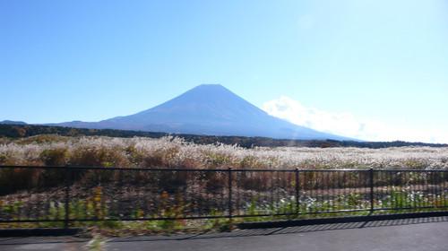 Susuki20151103_2